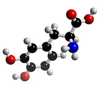 molecula levodopa