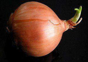 remedio casero con cebolla