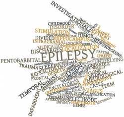 nuve de palabras relacionadas con la epilepsia