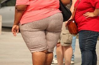 grasa y obesidad