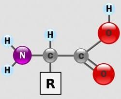 estructura de un alpha aminoácido