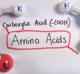 estructura de los aminoácidos