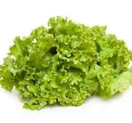 lechuga hojas verdes
