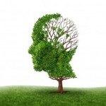 Remedios caseros para la memoria