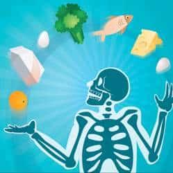 ilustración sobre osteoporosis