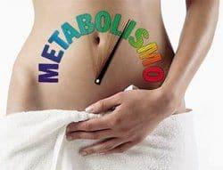 metabolismo del cuerpo