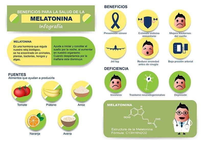 infografía sobre la Melatonina