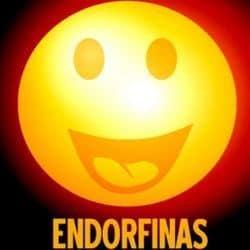 endorfinas y felicidad