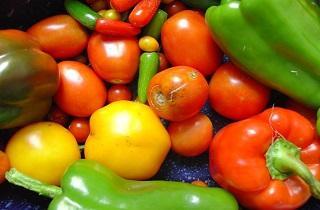 nutrientes vitaminas y minerales