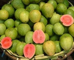 fruta guayaba