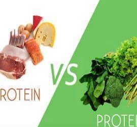 proteína origen animal contra la proteína de origen vegetal