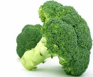 brócoli vegetal