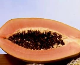 fruta papaya